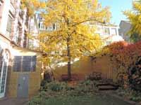 Johann Wolfgang von Goethe Goethe-jardin-p